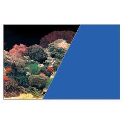 Fond decor corail/bleu - ZOLUX