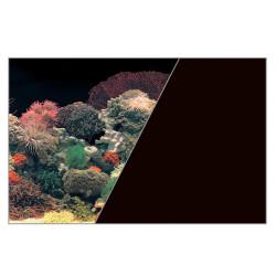 Fond decor corail/noir - ZOLUX
