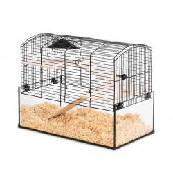 Cage neo panas pt rg noir glas - ZOLUX
