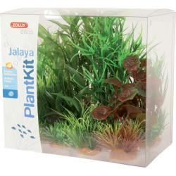 Plantkit jalaya nâ2 - ZOLUX