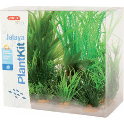 Plantkit jalaya nâ1 - ZOLUX