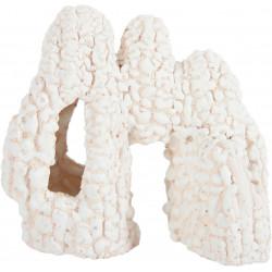 Arche koral blc 1 - ZOLUX