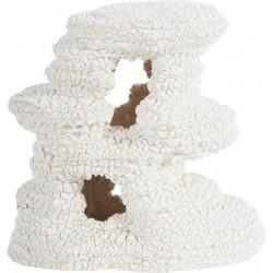 Arche koral blc 4 - ZOLUX
