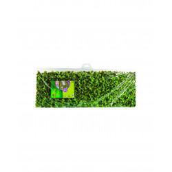 Treillis feuilles flexigreen 1x2m PVC naturel - NORTENE