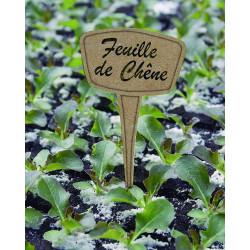 Etiquettes à planter fib 15cm pp/misca marron - NORTENE