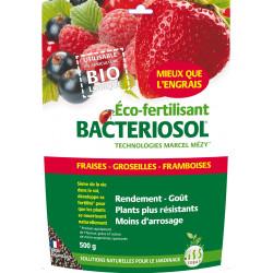 Bacteriosol fraise-petits fruits 500g - SOBAC