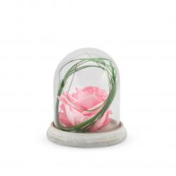 Verrine stab cloche cim s rose pastel - NATURALYS