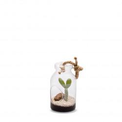 Terra vivant bottle s cactée - NATURALYS