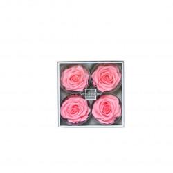 Tete rose premium rose pastel (x4) - NATURALYS