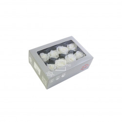 Tete rose media blanc (x8) - NATURALYS