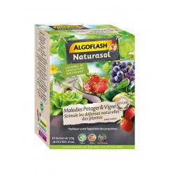 Maladies legume sdn algoflash naturasol 20x 1.25 - ALGOFLASH