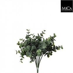Eucalyptus vert - l20cm - MICA