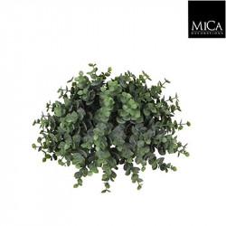 Eucalyptus demi boule vert - h15xd26cm - MICA