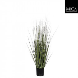 Gras pot vert - h92xd35cm - MICA