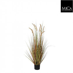Herbe panaché Dogtail pot vert - h92xd35cm - MICA
