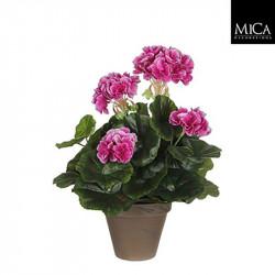 Géranium violet pot Stan d11,5cm - h34xd20cm - MICA