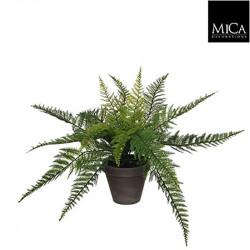 Fougère verte pot Stan gris d13,5cm - h38xd50cm - MICA
