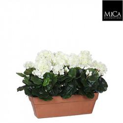 Géranium blanc jardinière terra - l39xb13xh40cm - MICA