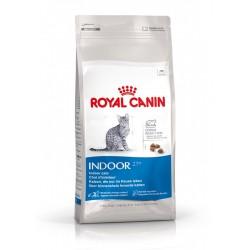 Croquettes Royal Canin pour chat d'intérieur adulte - 2kg