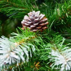"""Sapin artificiel """"Empress Spruce Frosted with cones"""" - 215cm"""