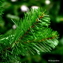 "Sapin artificiel ""Tuscan Spruce"" - 185cm"