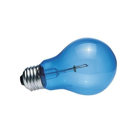 """Ampoule lumière du jour """"Daylight blue reptile Bulb"""" Zoo Med - 60W"""