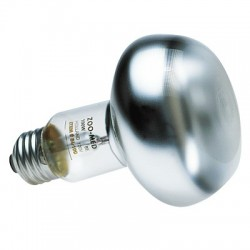 Ampoule chauffante Zolux - 60 W
