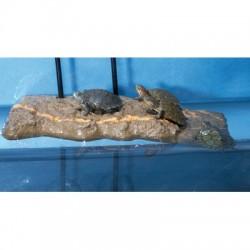 Ilôt flottant pour tortue - taille M
