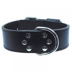 Collier intervention noir Zolux - 60 cm
